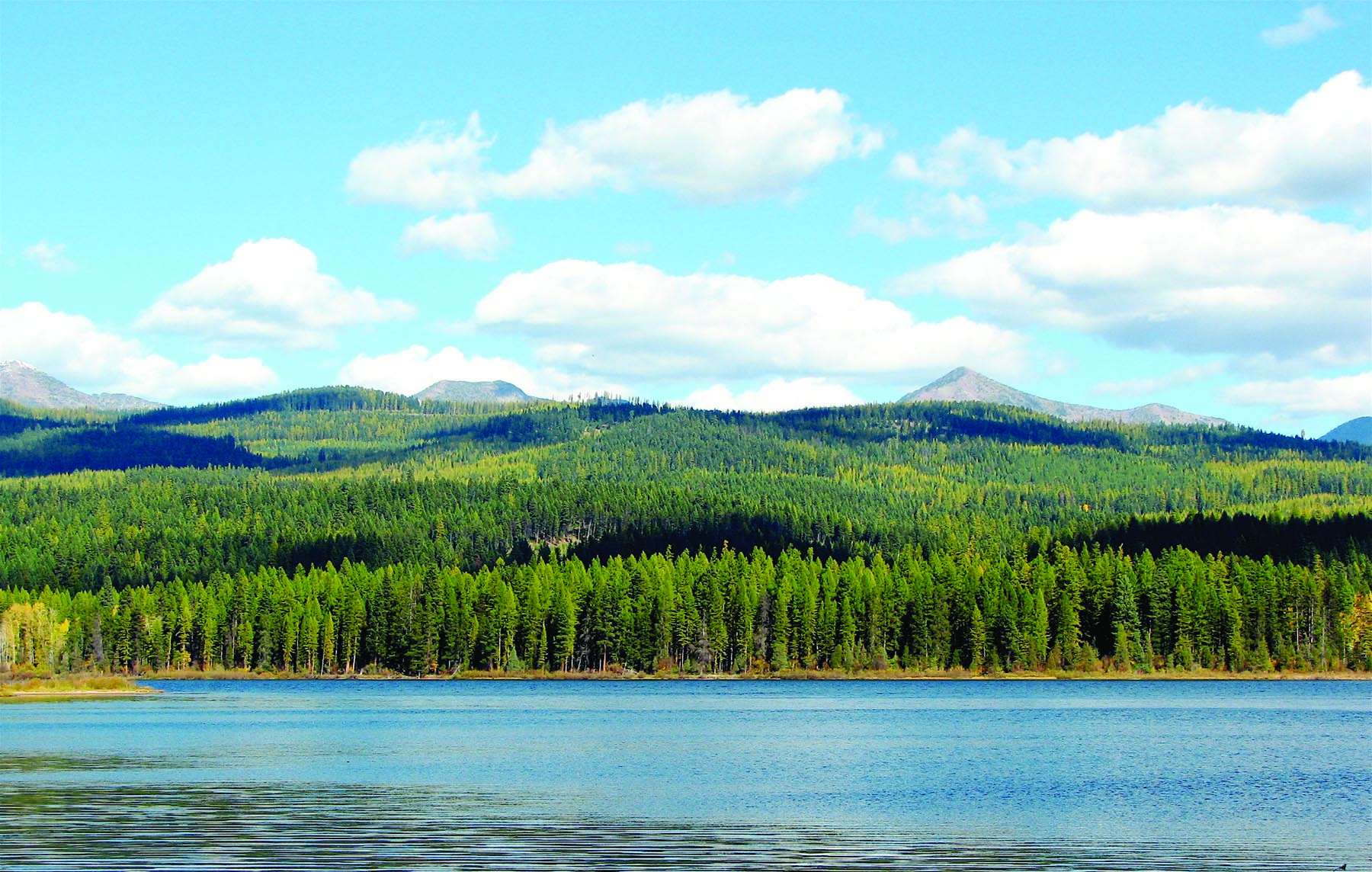 seeley lake single men The seeley lake 50 is on saturday june 30, 2018 it includes the following events: seeley 50k, seeley 25k, and seeley 10k in order to use runsignup, your browser must accept cookies.