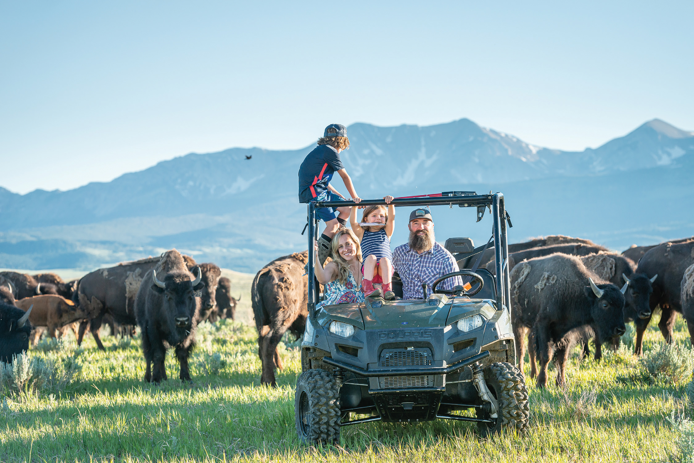 Ranching in the New West